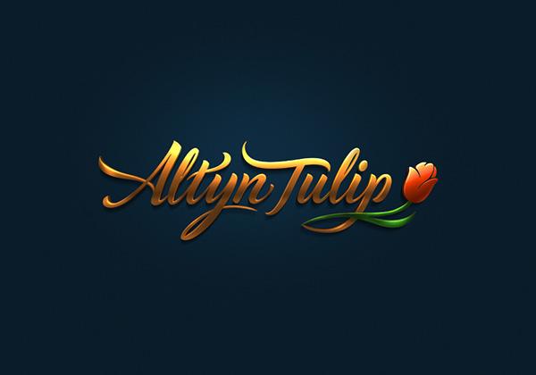 Logo-Thiết kế-Biểu trưng đồng-ví dụ-4